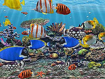 Aquarium 3D Bildschirmschoner kostenlos als Shareware zum download