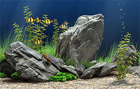 Dream Aquarium 3D Screen Saver
